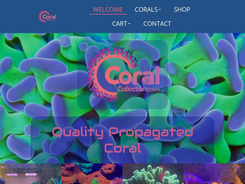 coralcollectors-com-1024x768desktop-b4a734